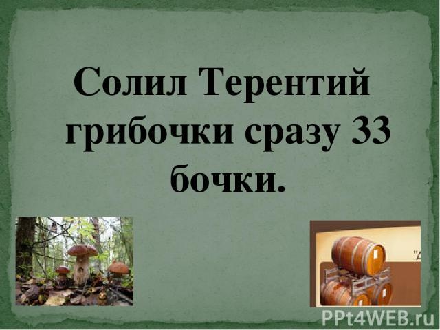 Солил Терентий грибочки сразу 33 бочки.