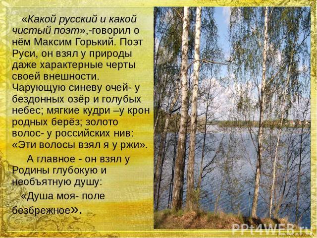 «Какой русский и какой чистый поэт»,-говорил о нём Максим Горький. Поэт Руси, он взял у природы даже характерные черты своей внешности. Чарующую синеву очей- у бездонных озёр и голубых небес; мягкие кудри –у крон родных берёз; золото волос- у россий…