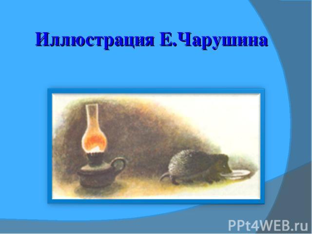 Иллюстрация Е.Чарушина
