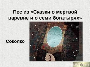 Пес из «Сказки о мертвой царевне и о семи богатырях» Соколко
