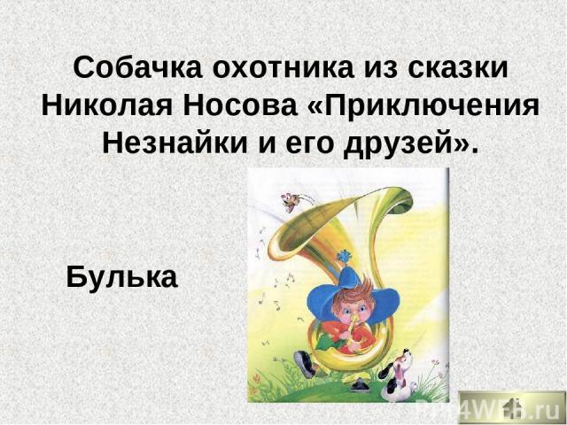 Собачка охотника из сказки Николая Носова «Приключения Незнайки и его друзей». Булька