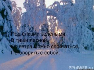 Под ёлками зелёными, В тиши лесной, От ветра можно спрятаться, Поговорить с собо