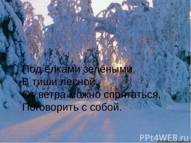 Под ёлками зелёными, В тиши лесной, От ветра можно спрятаться, Поговорить с собой.