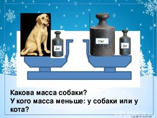 2кг 10кг 2кг Какова масса собаки? У кого масса меньше: у собаки или у кота? coro