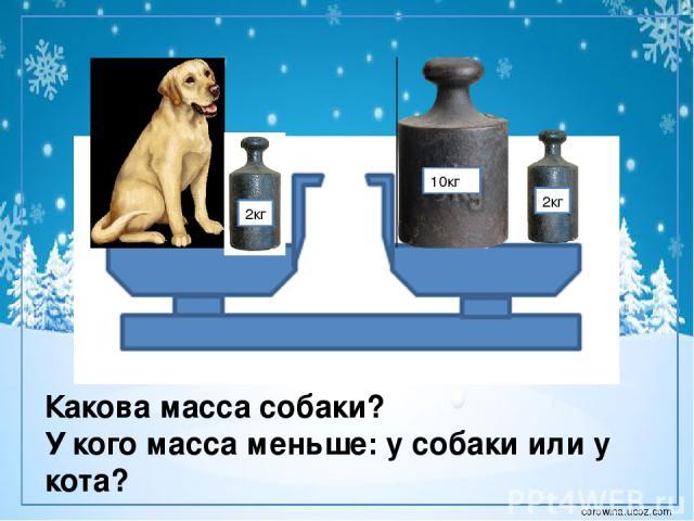 2кг 10кг 2кг Какова масса собаки? У кого масса меньше: у собаки или у кота? corowina.ucoz.com