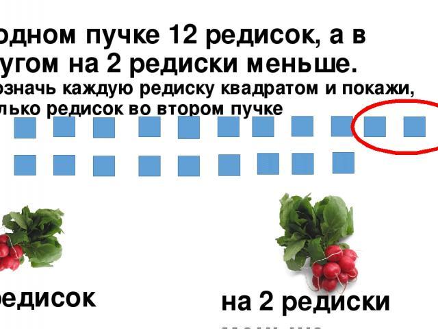 В одном пучке 12 редисок, а в другом на 2 редиски меньше. Обозначь каждую редиску квадратом и покажи, сколько редисок во втором пучке 12 редисок на 2 редиски меньше.