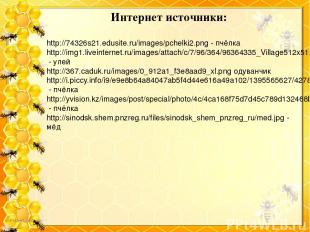 Интернет источники: http://74326s21.edusite.ru/images/pchelki2.png - пчёлка http