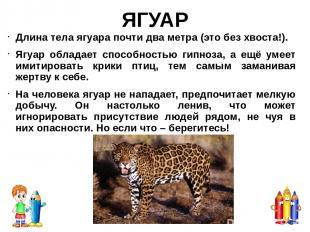Гепард – самое быстро в мире наземное существо. Может разогнаться до 113 км всег