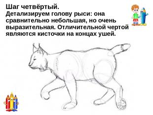 Мастер класс: Как нарисовать гепарда - http://dayfun.ru/archives/8074 Как нарисо