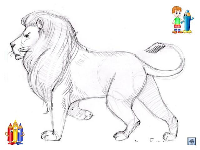 Шаг третий. Обведём более жирной штрихованной линией контуры тела, тем самым показывая шерсть зверя.