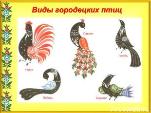 Виды городецких птиц