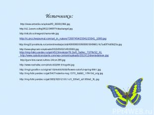 Источники: http://img-fotki.yandex.ru/get/9832/82912106.1c/0_939e6_cd1956e0_XL.j