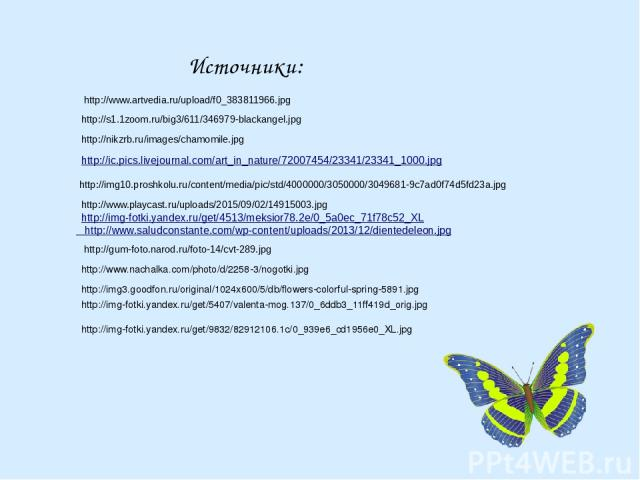 Источники: http://img-fotki.yandex.ru/get/9832/82912106.1c/0_939e6_cd1956e0_XL.jpg http://ic.pics.livejournal.com/art_in_nature/72007454/23341/23341_1000.jpg http://img-fotki.yandex.ru/get/4513/meksior78.2e/0_5a0ec_71f78c52_XL http://www.saludconsta…