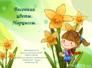 Весенние цветы. Нарциссы. Работу выполнила учитель начальных классов МБОУ СОШ №1