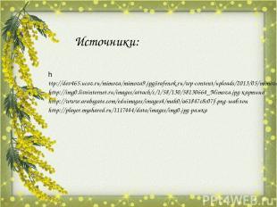 Источники: http://dev465.ucoz.ru/mimoza/mimoza9.jpgjirafenok.ru/wp-content/uploa