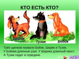 КТО ЕСТЬ КТО? Трёх щенков назвали Бобик, Шарик и Тузик. У Бобика длинные уши. У