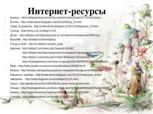 Интернет-ресурсы Берёза – http://alldaydesing.net/vse-dlya-photoshop/png-fayly/5