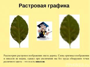 Растровая графика Рассмотрим растровое изображение листа дерева. Слева оригинал