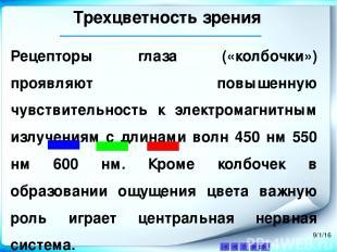 Трехцветность зрения Аквамарин — Цветовые координаты — HEX #7FFFD4 RGB (r,g,b) (