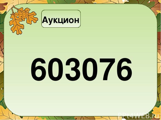 Аукцион 603076