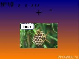 8 , ,,, + а оса №10