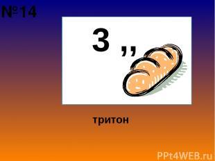 3 ,, тритон №14