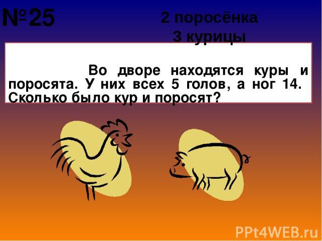 Во дворе находятся куры и поросята. У них всех 5 голов, а ног 14. Сколько было кур и поросят? 2 поросёнка 3 курицы №25