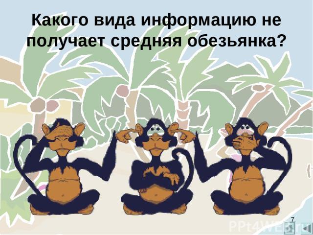 Какого вида информацию не получает средняя обезьянка? *