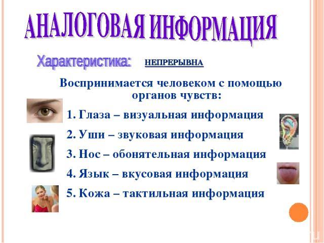 НЕПРЕРЫВНА Воспринимается человеком с помощью органов чувств: Глаза – визуальная информация Уши – звуковая информация Нос – обонятельная информация Язык – вкусовая информация Кожа – тактильная информация