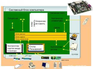 Системный блок компьютера Системная плата Процессор Слоты Расширения Шина данных