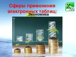 Сферы применения электронных таблиц: Экономика