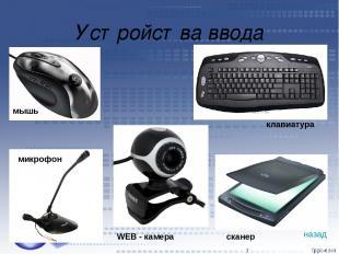 Устройства ввода * мышь клавиатура микрофон WEB - камера сканер назад