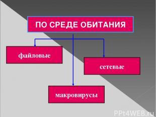 ПО СРЕДЕ ОБИТАНИЯ файловые сетевые макровирусы