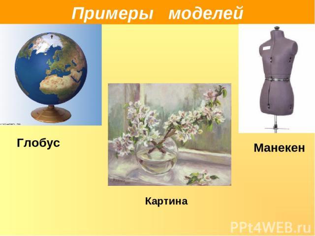 Примеры моделей Глобус Манекен Картина