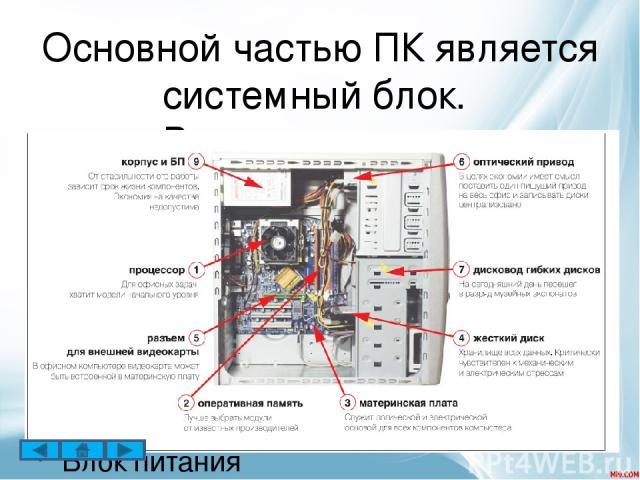 Мышь – одно из основных указательных устройств ввода