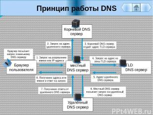 Принцип работы DNS Браузер пользователя местный DNS сервер Корневой DNS сервер У