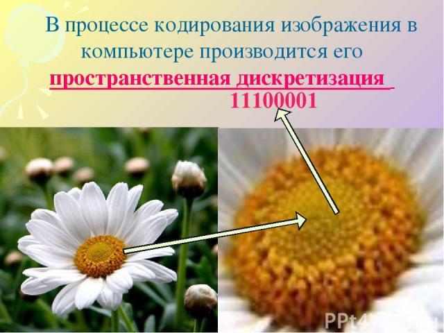 В процессе кодирования изображения в компьютере производится его пространственная дискретизация 11100001