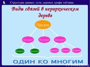 Виды связей в иерархическом дереве Предок Потомок1 Потомок2 Потомок3 Потомок11 П