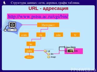 URL - адресация http://www.pstsu.ac.ru/cgi/bin/ Интернет com ru edu fr ac pstu w