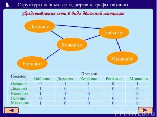 Представление сети в виде двоичной матрицы Дедкино Бабкино Кошкино Репкино Мышки
