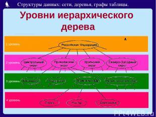 Уровни иерархического дерева 4 уровень 3 уровень 2 уровень 1 уровень Структуры д