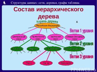 Состав иерархического дерева Структуры данных: сети, деревья, графы таблицы.