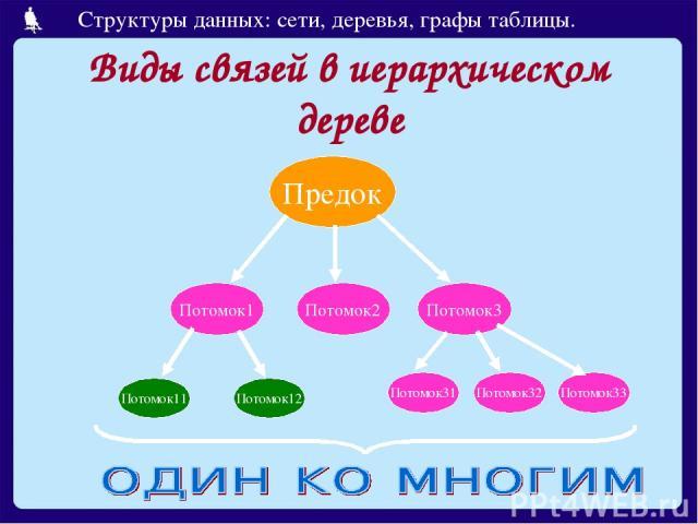 Виды связей в иерархическом дереве Предок Потомок1 Потомок2 Потомок3 Потомок11 Потомок12 Потомок31 Потомок32 Потомок33 Структуры данных: сети, деревья, графы таблицы.