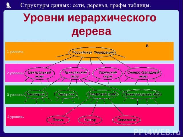 Уровни иерархического дерева 4 уровень 3 уровень 2 уровень 1 уровень Структуры данных: сети, деревья, графы таблицы.