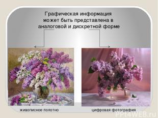 Графическая информация может быть представлена в аналоговой и дискретной форме ж