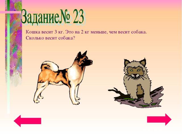 Кошка весит 3 кг. Это на 2 кг меньше, чем весит собака. Сколько весит собака?