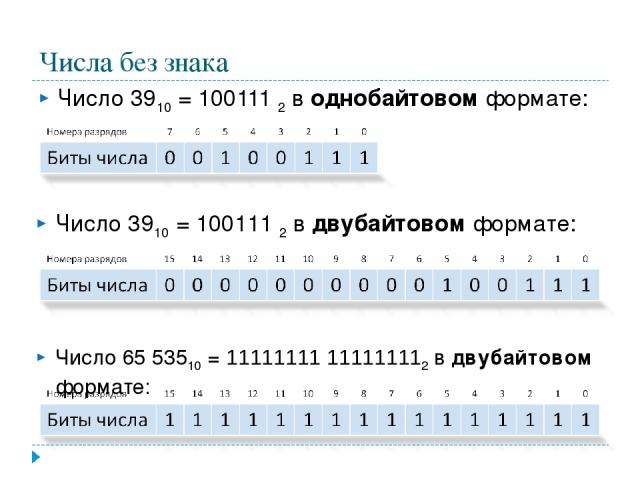 Числа без знака Число 3910 = 100111 2 в однобайтовом формате: Число 3910 = 100111 2 в двубайтовом формате: Число 65 53510 = 11111111 111111112 в двубайтовом формате: