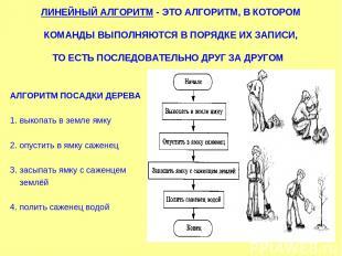 ЛИНЕЙНЫЙ АЛГОРИТМ - ЭТО АЛГОРИТМ, В КОТОРОМ КОМАНДЫ ВЫПОЛНЯЮТСЯ В ПОРЯДКЕ ИХ ЗАП