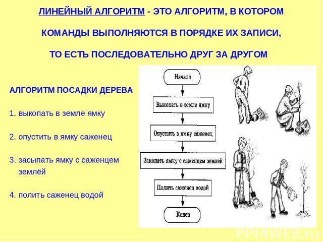 ЛИНЕЙНЫЙ АЛГОРИТМ - ЭТО АЛГОРИТМ, В КОТОРОМ КОМАНДЫ ВЫПОЛНЯЮТСЯ В ПОРЯДКЕ ИХ ЗАПИСИ, ТО ЕСТЬ ПОСЛЕДОВАТЕЛЬНО ДРУГ ЗА ДРУГОМ АЛГОРИТМ ПОСАДКИ ДЕРЕВА 1. выкопать в земле ямку 2. опустить в ямку саженец 3. засыпать ямку с саженцем землёй 4. полить саже…