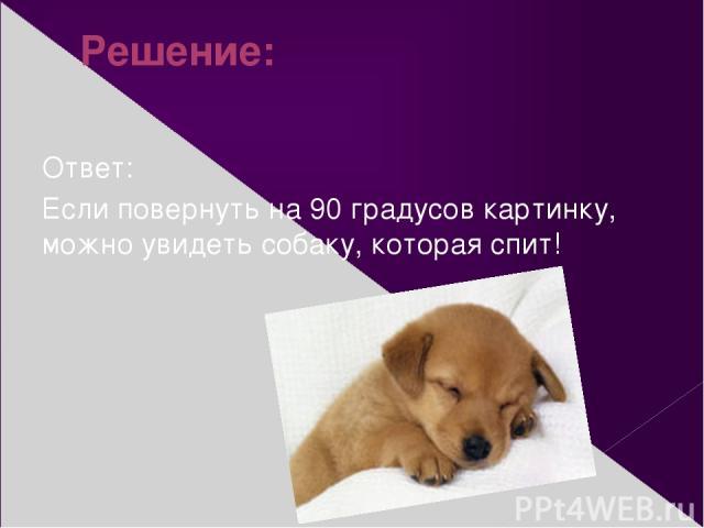 Решение: Ответ: Если повернуть на 90 градусов картинку, можно увидеть собаку, которая спит!